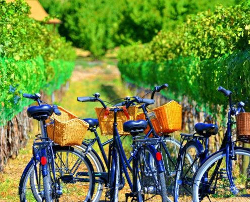 Bike riding in Colorado - Find the best realtors for the Grand Valley in Palisade, CO. Fruit and Wine Real Estate has homes for sale in Mesa County.